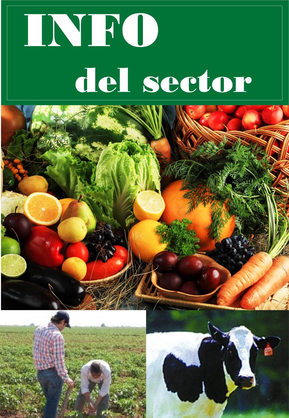 Infografias del Sector